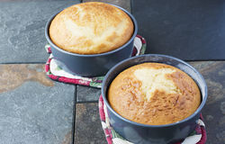 Homemade Vanilla Cakes in metal pans.  Stock Images