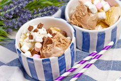 Homemade vanilla and chocolate ice cream with marshmallow, serve Stock Photos