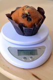 Homemade vanilla muffin with chocolate chips on a scale Stock Images