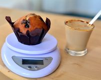 Homemade vanilla muffin with chocolate chips on a scale Stock Photography