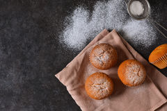 Homemade vanilla muffin with icing sugar Stock Images