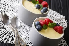 Homemade vanilla pudding with fresh berries close-up. horizontal. Homemade vanilla pudding with fresh berries close-up on the table. horizontal Stock Photos