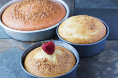 Homemade Vanilla and Strawberry cake in pans.  Stock Photos
