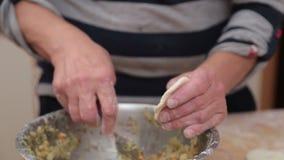 Homemade Varenyky Ukrainian Cuisine stock footage