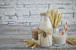 Homemade vegan milk of sprouted wheat. In a glass bottle, spikes and grains of wheat Royalty Free Stock Photo