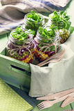 Homemade vegetable salad Royalty Free Stock Photography