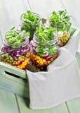 Homemade vegetable salad Royalty Free Stock Photos