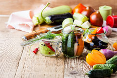 Homemade vegetables preserves. Preserved food concept Stock Photography