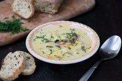 Homemade vegetarian mushroom cream soup Stock Photos
