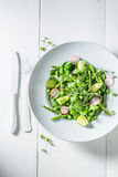 Homemade vegetarian salad with spinach, radishes and asparagus Royalty Free Stock Photo