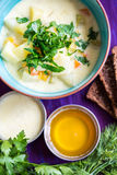 Homemade vegetarian soup with potato, carrots, pepper  with dark Royalty Free Stock Photos