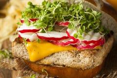 Homemade Vegetarian Soy Tofu Burger Stock Images