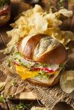 Homemade Vegetarian Soy Tofu Burger Royalty Free Stock Photography