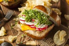 Homemade Vegetarian Soy Tofu Burger Royalty Free Stock Images