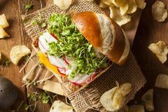 Homemade Vegetarian Soy Tofu Burger Royalty Free Stock Image