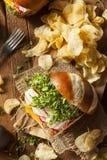 Homemade Vegetarian Soy Tofu Burger Stock Photography