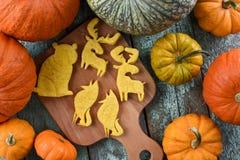 Homemade vegeterian animal shaped cookies - moose, bear and fox Stock Photos