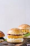 Homemade veggie burger Stock Images