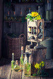 Homemade virgin oil machine with sunflower and seeds Stock Image