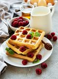 Homemade waffles with berries royalty free stock image