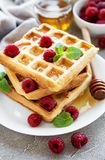 Homemade waffles with berries stock photo