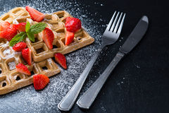 Homemade Waffles with fresh Strawberries Royalty Free Stock Photo