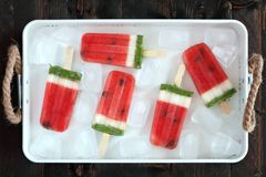 Homemade watermelon popsicles in a rustic ice filled tray Royalty Free Stock Image