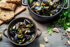 Homemade way of serving mussels royalty free stock photos