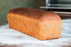 Homemade Wheat Bread Royalty Free Stock Photo