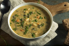 Homemade White Bean Soup Royalty Free Stock Image
