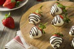Homemade White Chocolate Covered Strawberries Stock Image