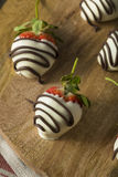 Homemade White Chocolate Covered Strawberries Royalty Free Stock Photography