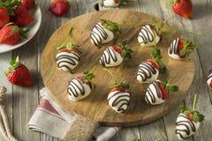 Homemade White Chocolate Covered Strawberries Stock Photography