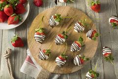 Homemade White Chocolate Covered Strawberries royalty free stock images
