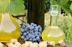Homemade white and red wine from grapes. Decanters, bottles, corks and grapes photographed against the background of the Royalty Free Stock Photos