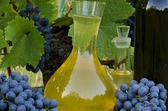 Homemade white and red wine from grapes. Decanters, bottles, corks and grapes photographed against the background of the Stock Photos