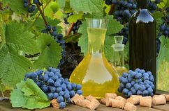 Homemade white and red wine from grapes. Decanters, bottles, corks and grapes photographed against the background of the Royalty Free Stock Photo