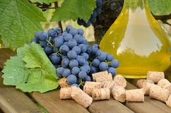 Homemade white and red wine from grapes. Decanters, bottles, corks and grapes photographed against the background of the Stock Photo