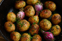Homemade whole baked young potato and violet onion Stock Images