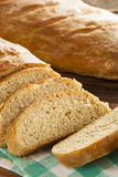 Homemade Whole Grain Onion Bread Royalty Free Stock Photography