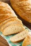 Homemade Whole Grain Onion Bread Royalty Free Stock Photos