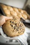 Homemade wholegrain bread Stock Photography