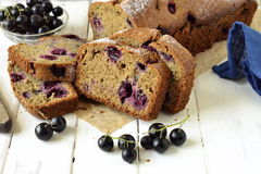 Homemade wholewheat cake with blackcurrant Stock Photos