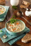 Homemade Wild Rice and Chicken Soup Stock Photography