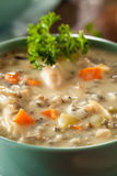 Homemade Wild Rice and Chicken Soup Royalty Free Stock Image