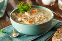 Homemade Wild Rice and Chicken Soup Royalty Free Stock Photos