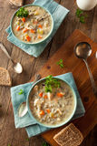 Homemade Wild Rice and Chicken Soup Royalty Free Stock Photo
