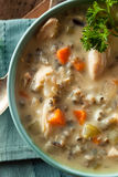 Homemade Wild Rice and Chicken Soup Stock Photos