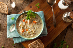 Homemade Wild Rice and Chicken Soup Stock Images