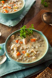 Homemade Wild Rice and Chicken Soup Stock Image